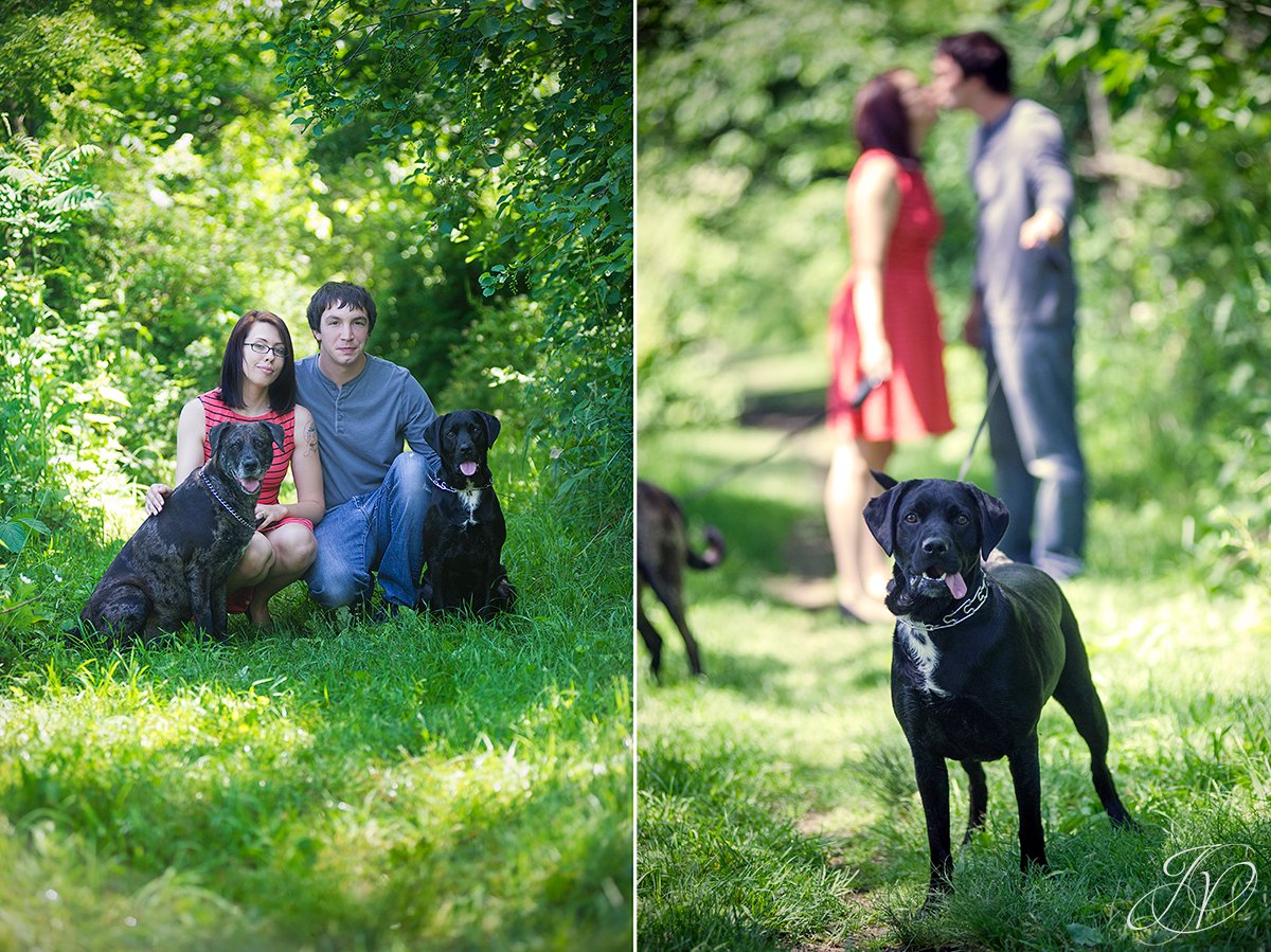 Saratoga Engagement Photographer, Albany Engagement, Engagement photo and pet, vischer ferry nature preserve