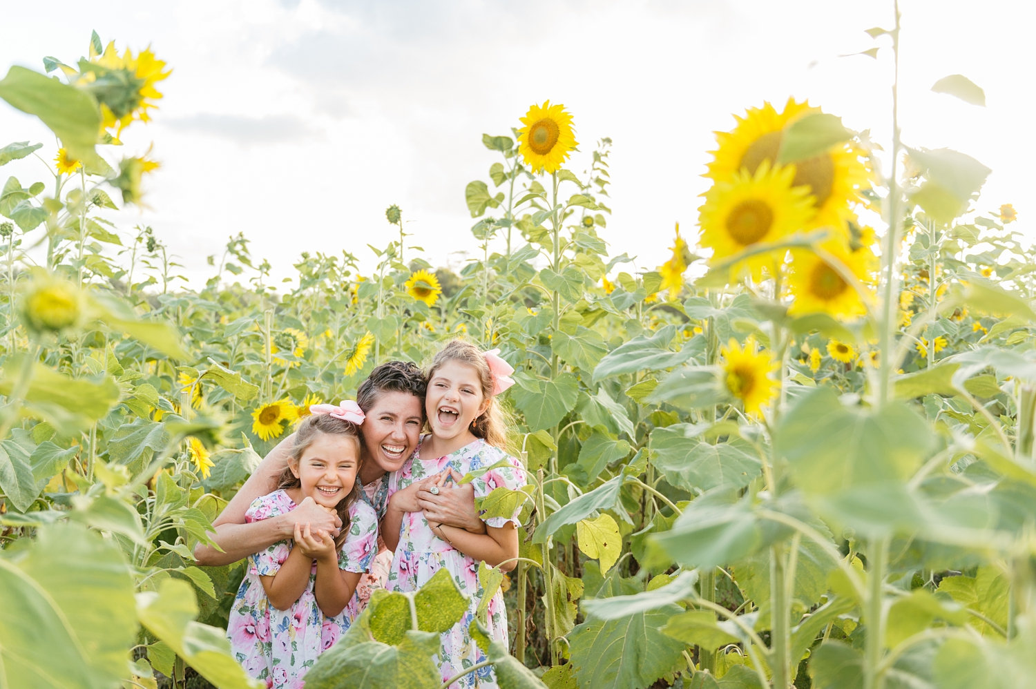 sunflower field portrait session, mom and daughters, sunflower fields, Rya Duncklee Photo